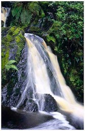 tarkine_waterfall2